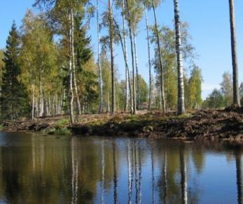 Коттеджный поселок Стеклянный ручей