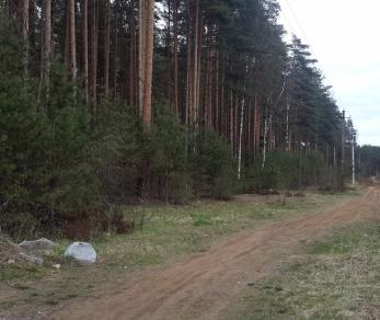 Продажа участка Всеволожск г., Спортивная ул., д. 43